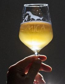 MICA CRAFT BEER